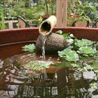 Fountain in Zen Garden Maui